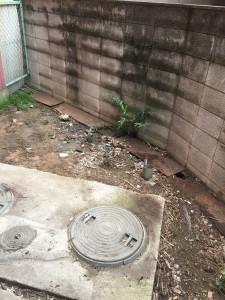 片付け後のお庭の状態