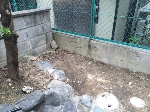 不用品を片付けた庭の一部